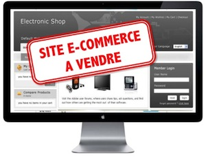 site-ecommerce-a-vendre