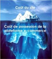 Coût de possession d'un site e-commerce