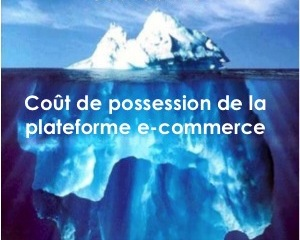 Connaitre le véritable coût de son site e-commerce = le Total Cost of Ownership (TCO) 1