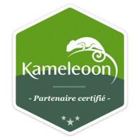 kameleoon-certified-partner