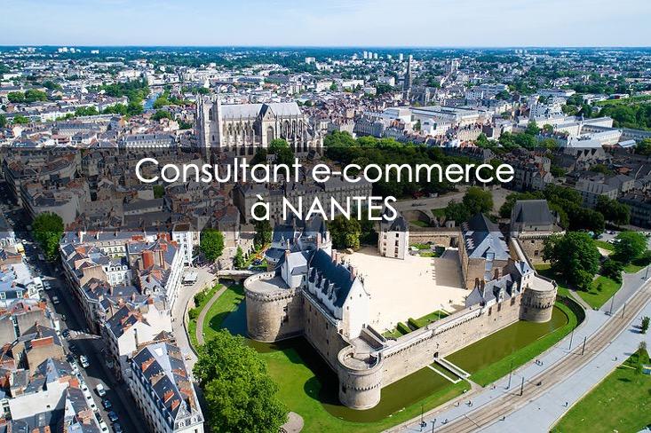 consultant e-commerce nantes