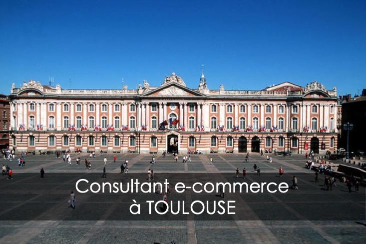 consultant e-commerce toulouse
