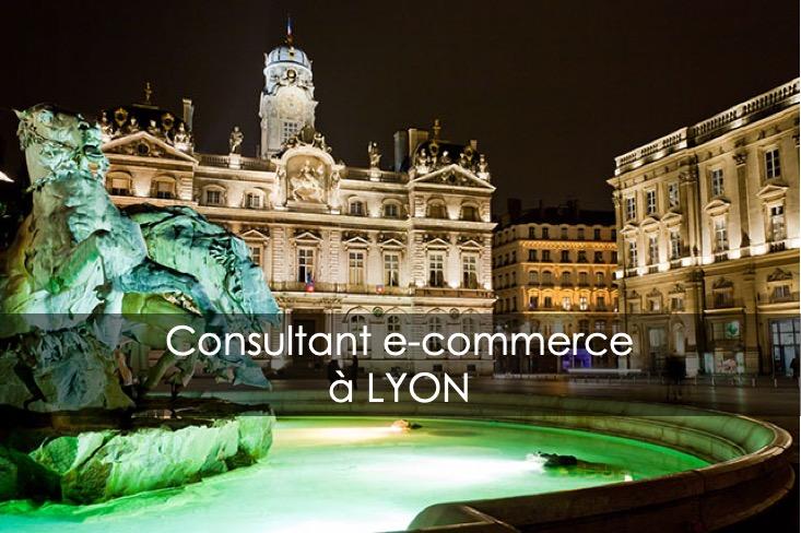 consultant e-commerce lyon