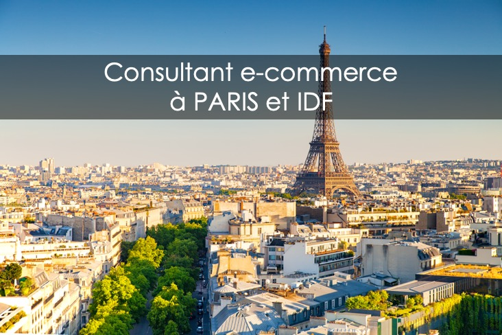 consultant e-commerce Paris et Ile-de-France